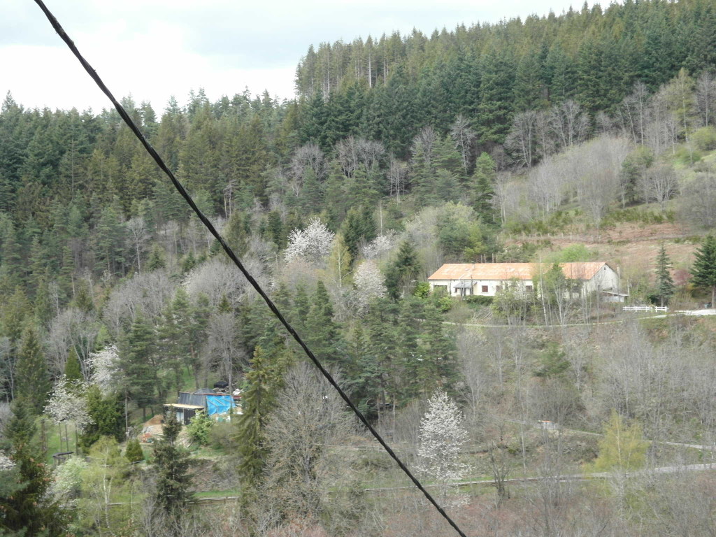 Rochetaillée Maison 9 pièces 200 m²