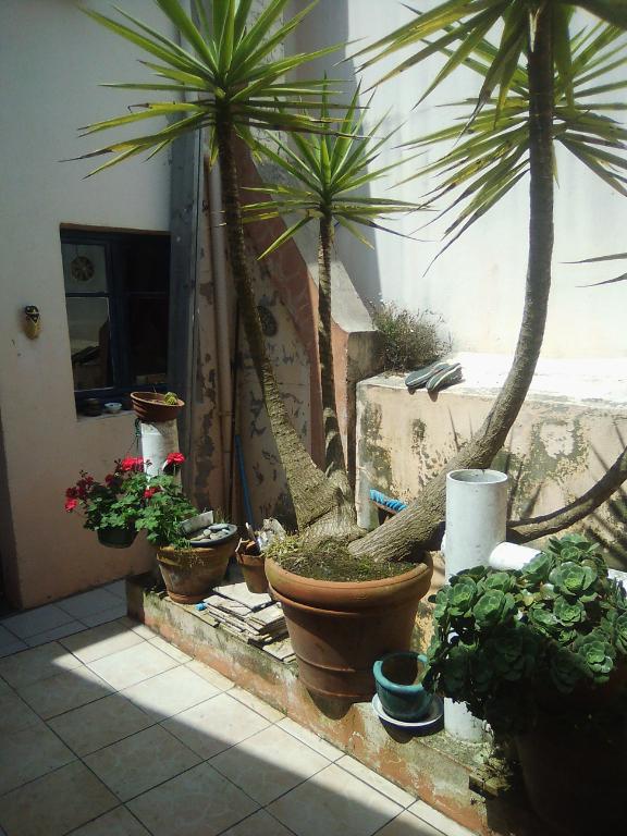 Maison Paimpol 4 pièce(s) 150 m2