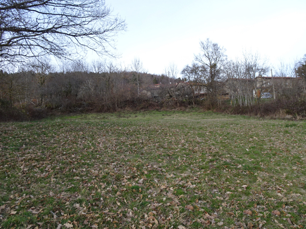 Terrain constructible viabilisé Roche En Reignier 6151 m²