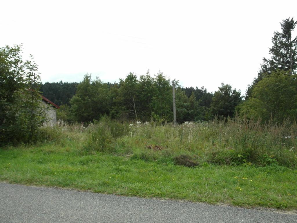 Terrain Le Bessat 1091 m²