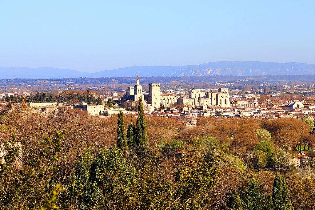Demeure de prestige Villeneuve Les Avignon 9 pièce(s) 244 m2