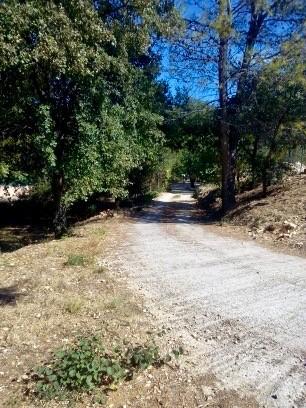 Bois de chênes truffiers de 12894m2